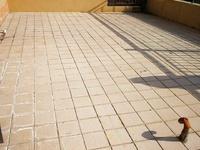 威高花园熙和苑多层洋房117平带大平台70平248万直签合同