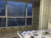 仅此一套高区世昌大道泰乐家园框架房采光一流豪华装修带全新家具