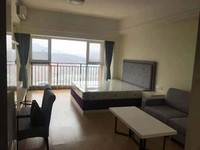 东方新天地精装修小公寓出租拎包入住