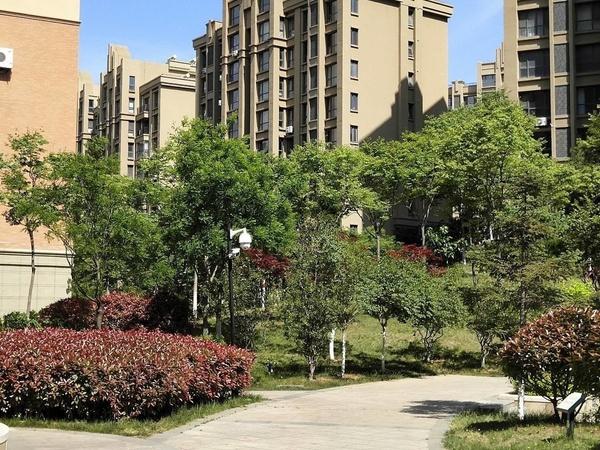 威高花园熙和苑 多层三室向阳 卫生间带窗 南北通透