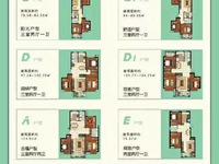 林语城电梯洋房,苘山核心位置,交5000顶2万