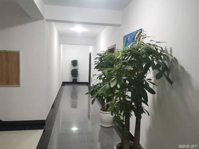 大福源临街 独栋办公楼 青岛北路 拎包入驻 一价全含 管家式服务