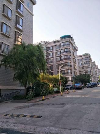 金城一期118平住人三楼中装130.8万带草啥