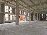出售羊亭660平米198万厂房